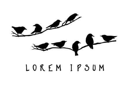 Grafiki wektorowej zestaw ręcznie rysowane ptaków Ameryki Północnej siedzącego na gałęzi. tusz kreślarski, styl graficzny.