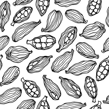 Wektor wzór z ręcznie rysowane kardamonu nasion. Piękne elementy stylistyki żywności, idealne dla każdej firmy związanej z branżą spożywczą.