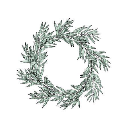 eucalyptus: Eucalyptus floral frame Illustration