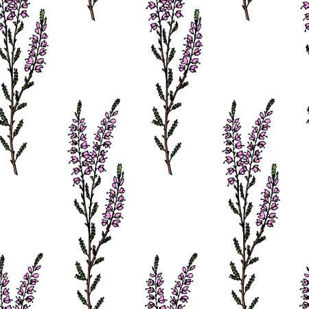 Heather naadloos patroon Vector Illustratie