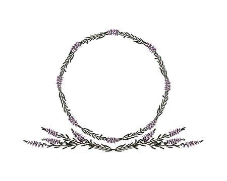 Hand gezeichnet Heather Frame isoliert auf weißem Hintergrund. Vektorgrafik