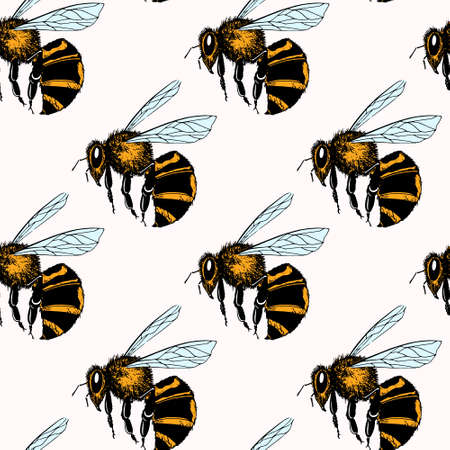 Bee seamless pattern 免版税图像 - 78680188