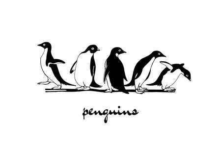 clumsy: Hand drawn penguins