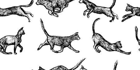 Modèle sans couture de vecteur avec des chats ludiques dessinés à la main. Éléments de design magnifiques, dessin au fusain