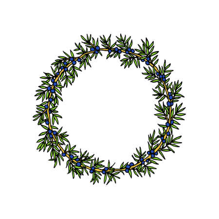 twigs: A Vector illustration of hand drawn juniper wreath. Beautiful floral design elements. Illustration