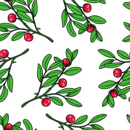 Hand drawn cranberry pattern