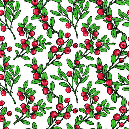 twigs: Vector seamless pattern with hand drawn cranberry twigs. Beautiful floral design elements, ink drawing