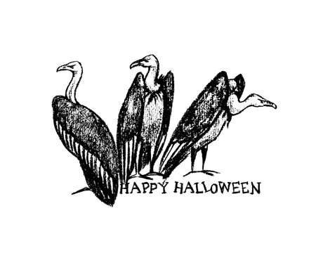 morose: Vector Halloween greeting card. Vector illustration of hand drawn creepy and comic vultures. Charcoal drawing, beautiful Halloween design elements.