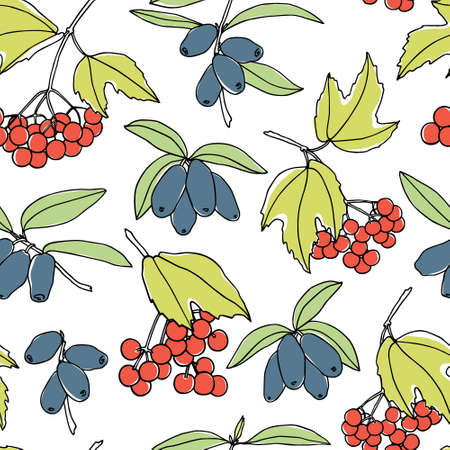 guelder rose: Vector seamless pattern with hand drawn viburnum and honeysuckle twigs. Beautiful food design elements, ink drawing