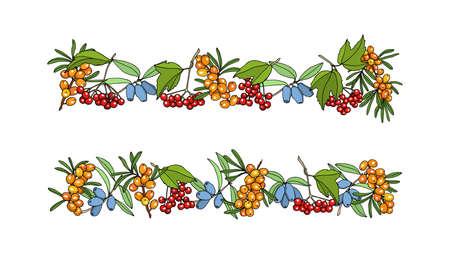 guelder rose: Viburnum and cherry twigs border.