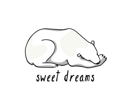 Vector card with hand drawn cute sleeping polar bear. Beautiful ink drawing, animal illustration