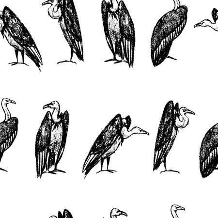 Vector seamless pattern with hand drawn creepy and comic vultures. Charcoal drawing, beautiful Halloween design elements.