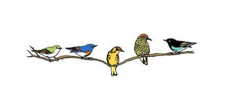 Hand drawn birds Ilustracja