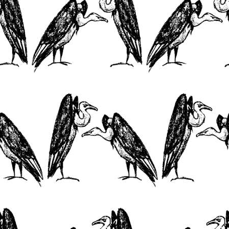 Hand drawn vultures pattern