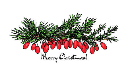Christmas floral card Vettoriali