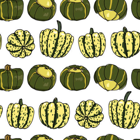 Vector seamless pattern with  hand drawn buttercup and carnival squash. Ink drawing, beautiful vegetarian design elements.