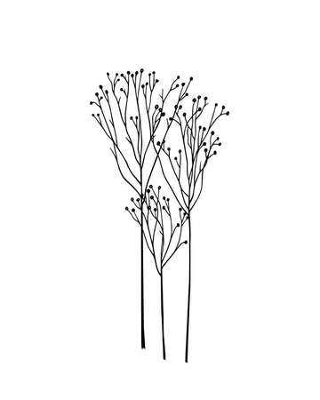 Vector illustration of hand drawn meadow grass. Ink drawing, graphic style. 向量圖像