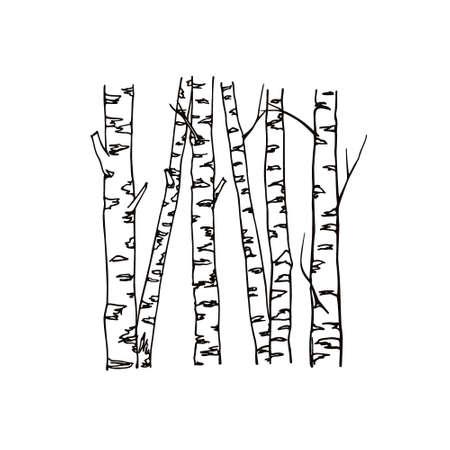Ilustração vetorial de troncos de árvores de vidoeiro desenhadas à mão. Desenho de tinta, estilo gráfico. Lindos elementos de design floral.