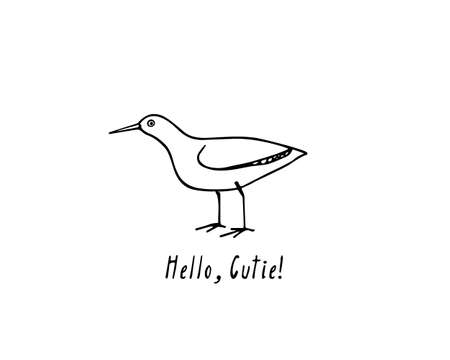 Hand drawn shorebird.