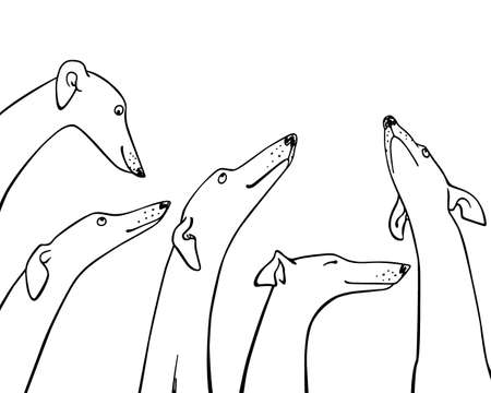 Hand drawn greyhounds