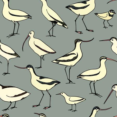 Hand drawn shorebird pattern. Illustration