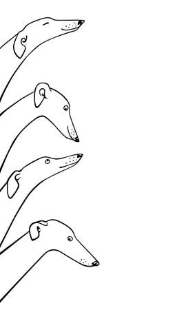 Vector illustration of hand drawn greyhound dogs. Beautiful design elements, ink drawing, funny illustration of cute dogs  Vectores