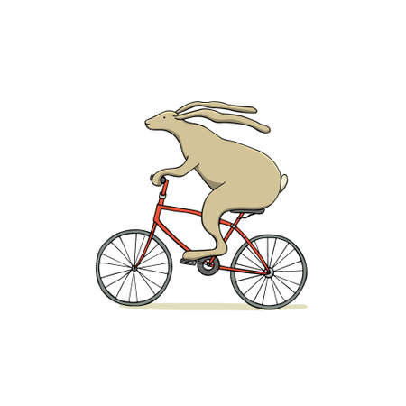 Hand drawn hare in bicycle.