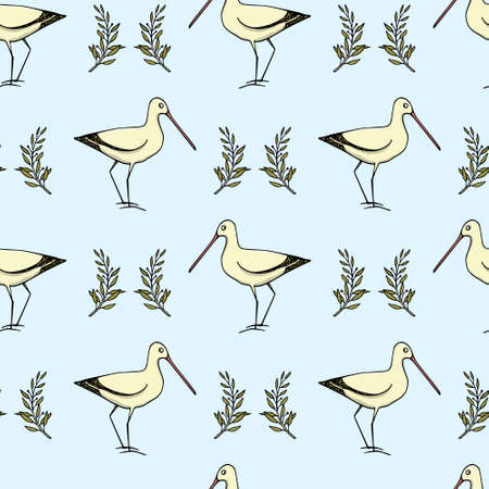Hand drawn shorebird pattern