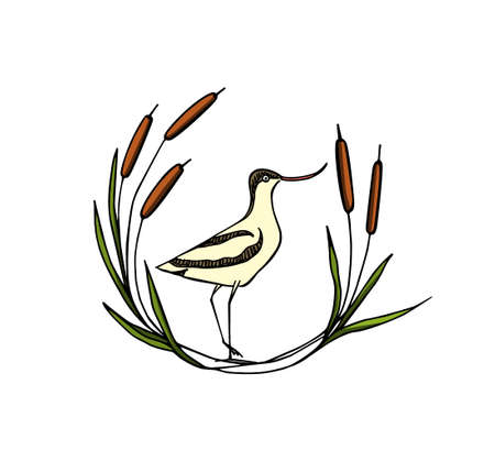 Vector illustration of hand drawn cute stilt in cattail laurel. Beautiful animal design elements, ink drawing, logo templates