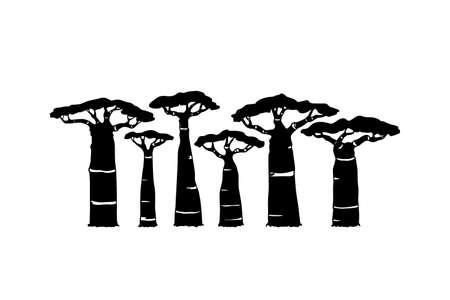 Baobab dessiné à la main