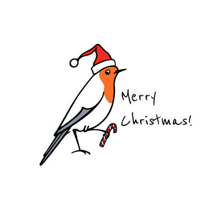 Vector New Year card with hand drawn cute robin in Santa's hat. Ink drawing, beautiful animal design elements. Vektorové ilustrace