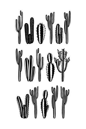 Vector card with hand drawn cacti. Beautiful floral design elements, perfect for prints and patterns