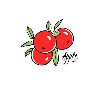 Vector card with hand drawn apple tree branch with apples. Beautiful food design elements. Ink drawing