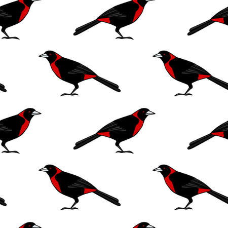 Vector seamless pattern with hand drawn bright tropical bird. Beautiful animal design element, ink drawing, perfect for prints and patterns Illustration