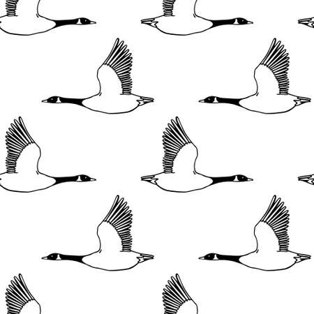 Vector seamless pattern with hand drawn flying wild geese. Beautiful animal design elements, ink drawing.