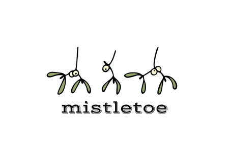 Vector card with hand drawn mistletoe branch. Ink drawing, graphic style, beautiful Christmas design element