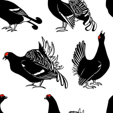 Vector seamless pattern with hand drawn male black grouse. Beautiful animal design elements, ink drawing.