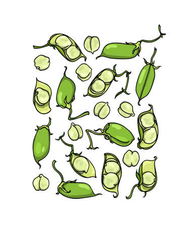 Vector card with hand drawn chickpea pods. Beautiful food design elements, ink drawing Ilustracja