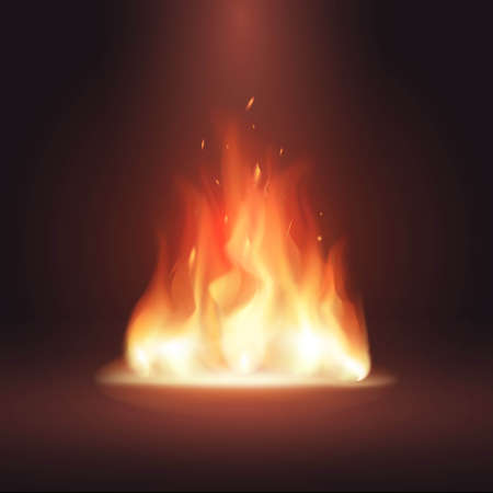 Vector burning realistic fire flames. Glowing particles. Vector light effect with transparency background. Campfire.