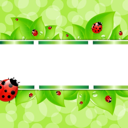 insect on leaf: Nature Background With Ladybug And Ribbons, Vector Illustration