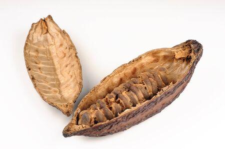 Cacao vruchten op witte achtergrond