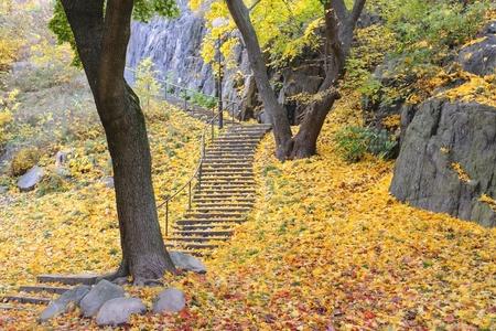 Trap met kleurrijke herfst bladeren Stockfoto