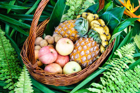 lanzones: Fresh fruits in a basket
