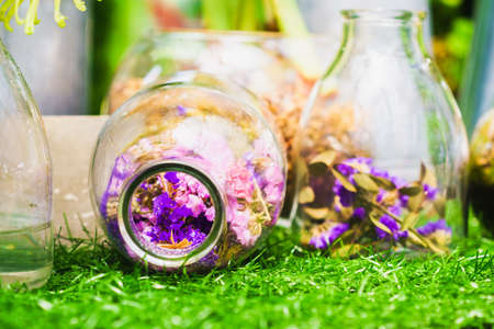 vivarium: Home decoration idea, Flowers in a clear bottle Stock Photo