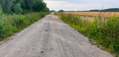 Old Town Road pathway through forrest and fields during summer.