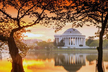 george washington: el Jefferson Memorial en el Festival de los Cerezos en Flor. Washington, DC