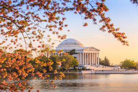 washington dc: the Jefferson Memorial during the Cherry Blossom Festival. Washington, DC Editorial