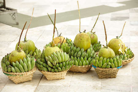 fruited: Coconuts and Bananas set for sell