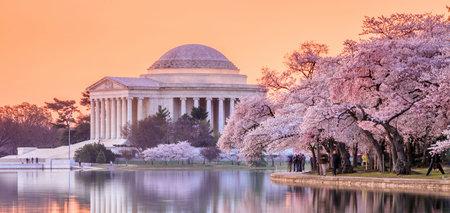 george washington: el Jefferson Memorial durante el Festival de los Cerezos en Flor. Washington, DC Editorial