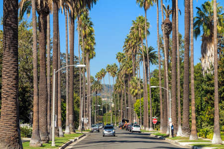 hills: Streets of Beverly Hills, California